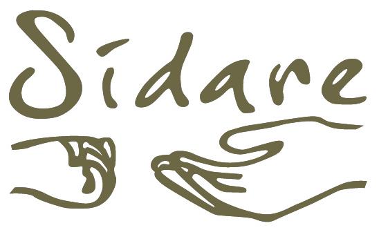 associazione sidare logo